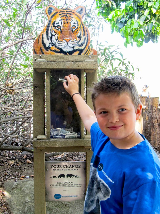 Meet Dylan: A Child Wildlife Conservationist